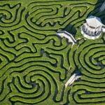 Maze at Longleat, England